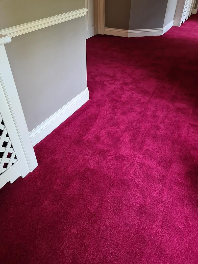 Living Floors - Carpet